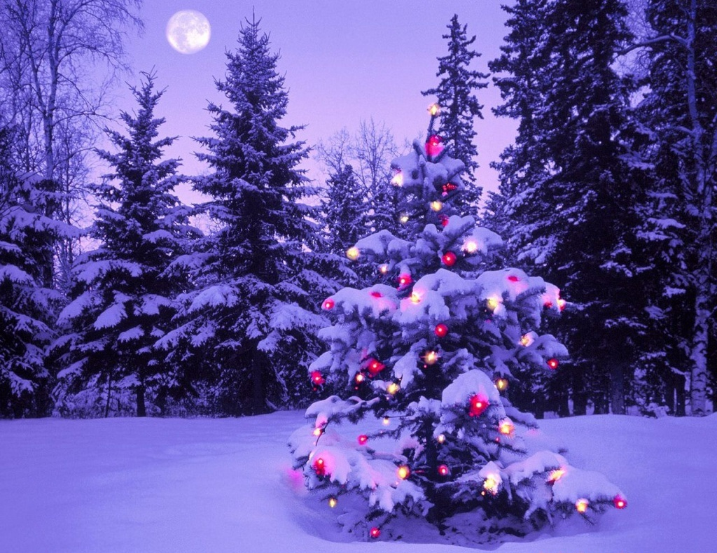 photo trick: beautiful christmas HD wallpapers