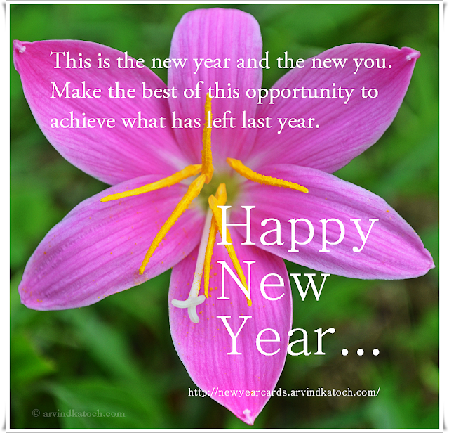 New Year, Happy New Year, opportunity, achieve, New Year Card, HD Card