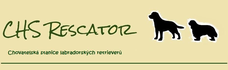 CHS Rescator