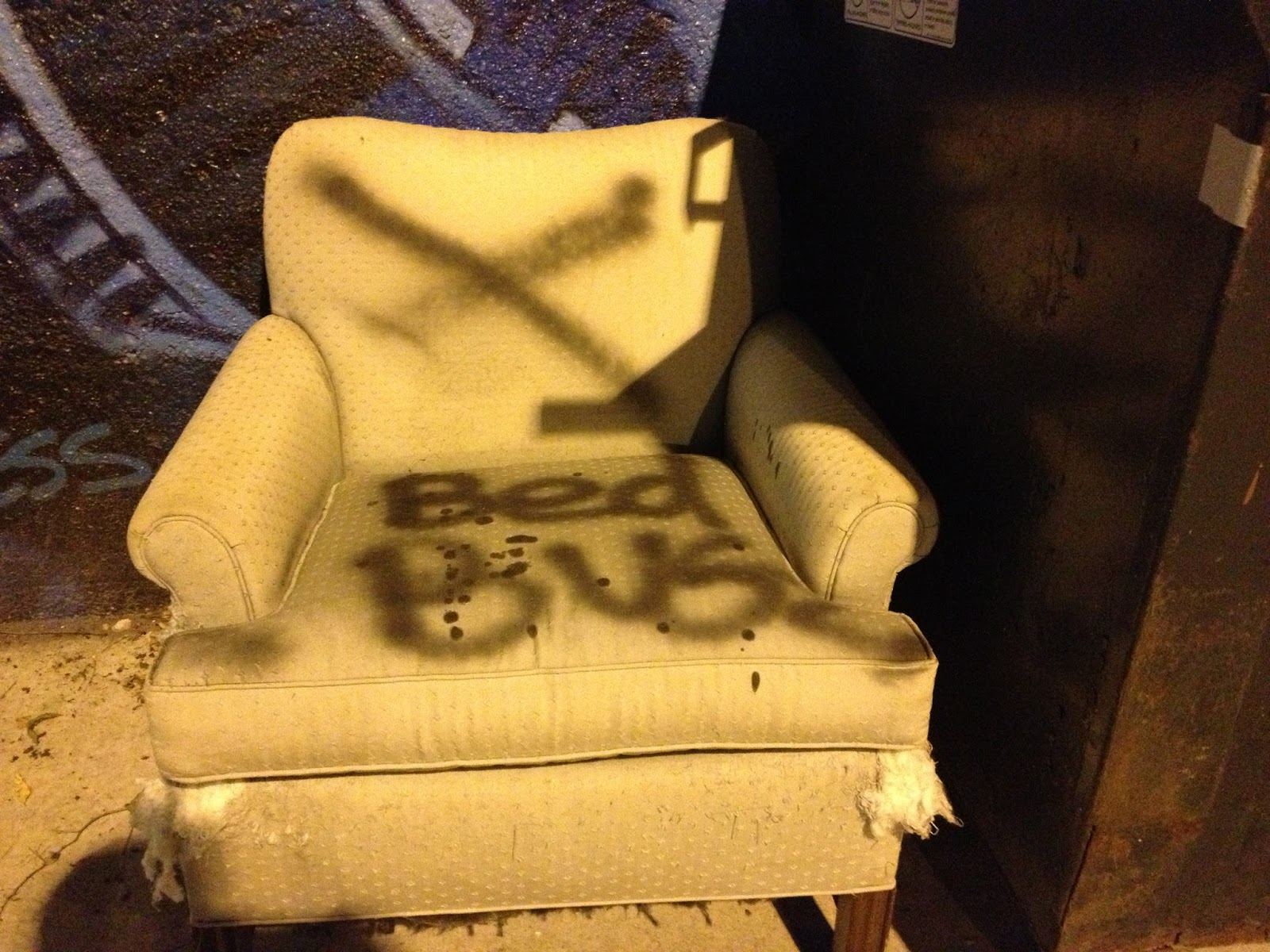 Chevanston Rogers Park Contagion Bedbug Infested Furniture