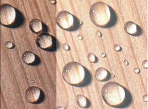 Водопоглощение древесины
