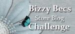 Bizzy Bec's Store Blog Challenge
