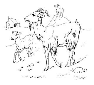 cabra para colorear