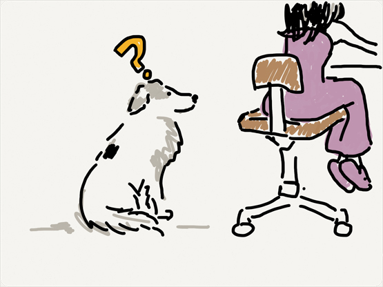 Why Dogs are not allowed in the office 1