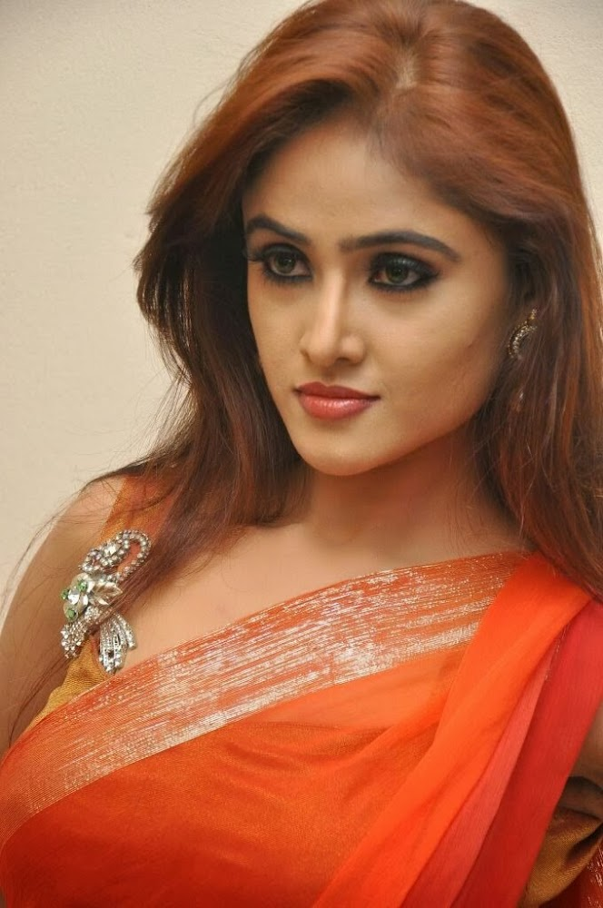 Sony Charishta Hot Photos in Saree at Naakaithe Nachindi Audio Launch Function