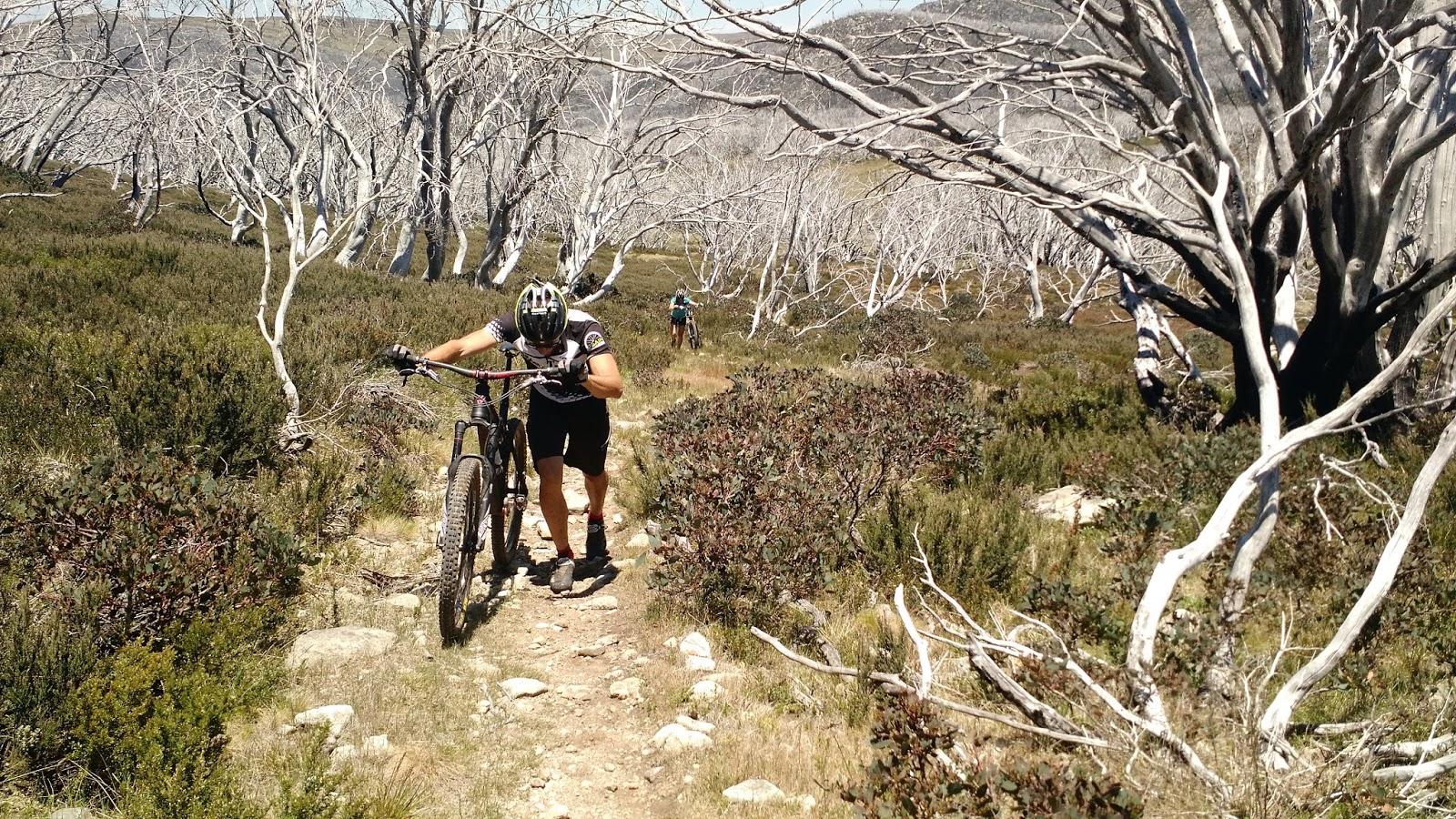 BMX Bicycle Outdoor Handlebar Grip BMX MTB Cycling Bicycle Lot of 5 prs URBAN
