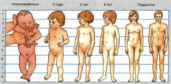 Куклы Текстильные шарнирные
