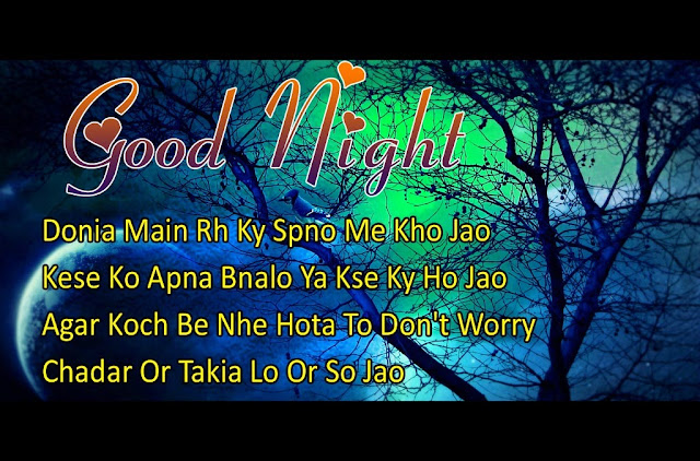 Good Night SMS In Hindi For Girlfriend-Images