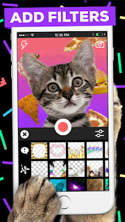 Giphy launches GIPHY CAM, an iOS app that lets you create and share GIFs