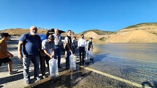 Bozkır'da Baraj ve Göletlere 90bin sazan yavrusu bırakıldı.