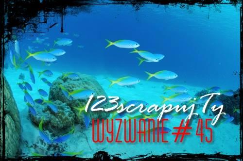 http://123scrapujty.blogspot.com/2014/08/wyzwanie-45-morskie-opowiesci.html