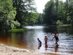 Vilken fantastisk sommar!