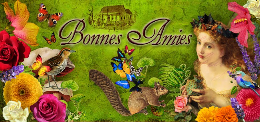 Welcome To Bonnes Amies!