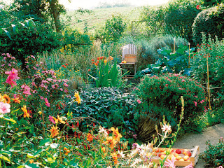 overview of late summer garden