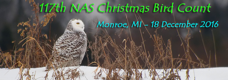 117th NAS Christmas Bird Count-Monroe, 18 Dec 2016