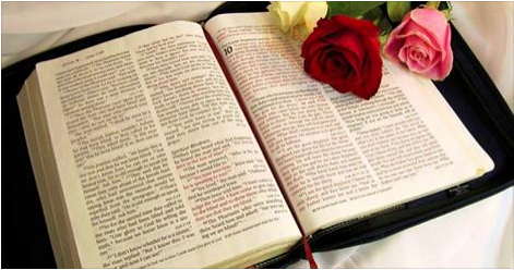 Resultado de imagem para Biblia Católica