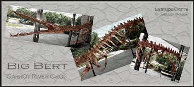 Big Bert, the Carrot River Croc - photo montage by Shelley Banks
