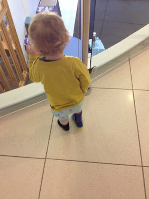 toddler looking through glass balustrade