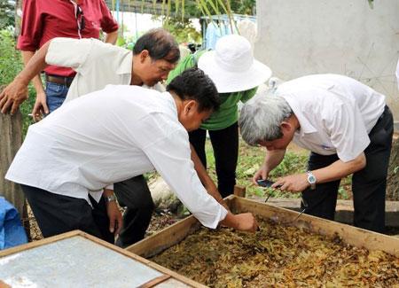 Trùn quế xử lý xác Thanh Long