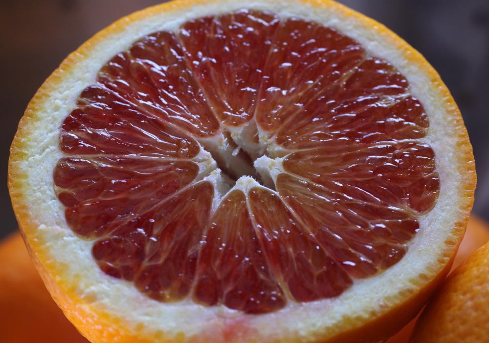 Best Orange Yogurt Cake Recipe