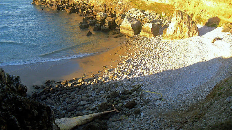 Ballena varada en Playa de Fuentes en San Vicente de la Barquera