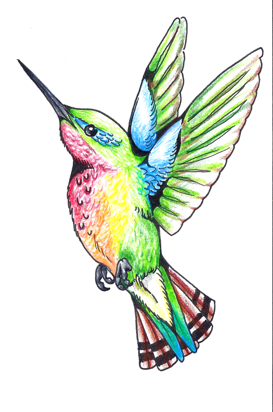 Tattoos of humming bird humming bird tattoo designs for Hummingbird tattoo designs