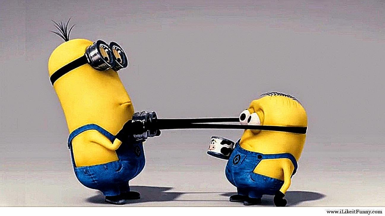 funny minion wallpaper | high definitions wallpapers