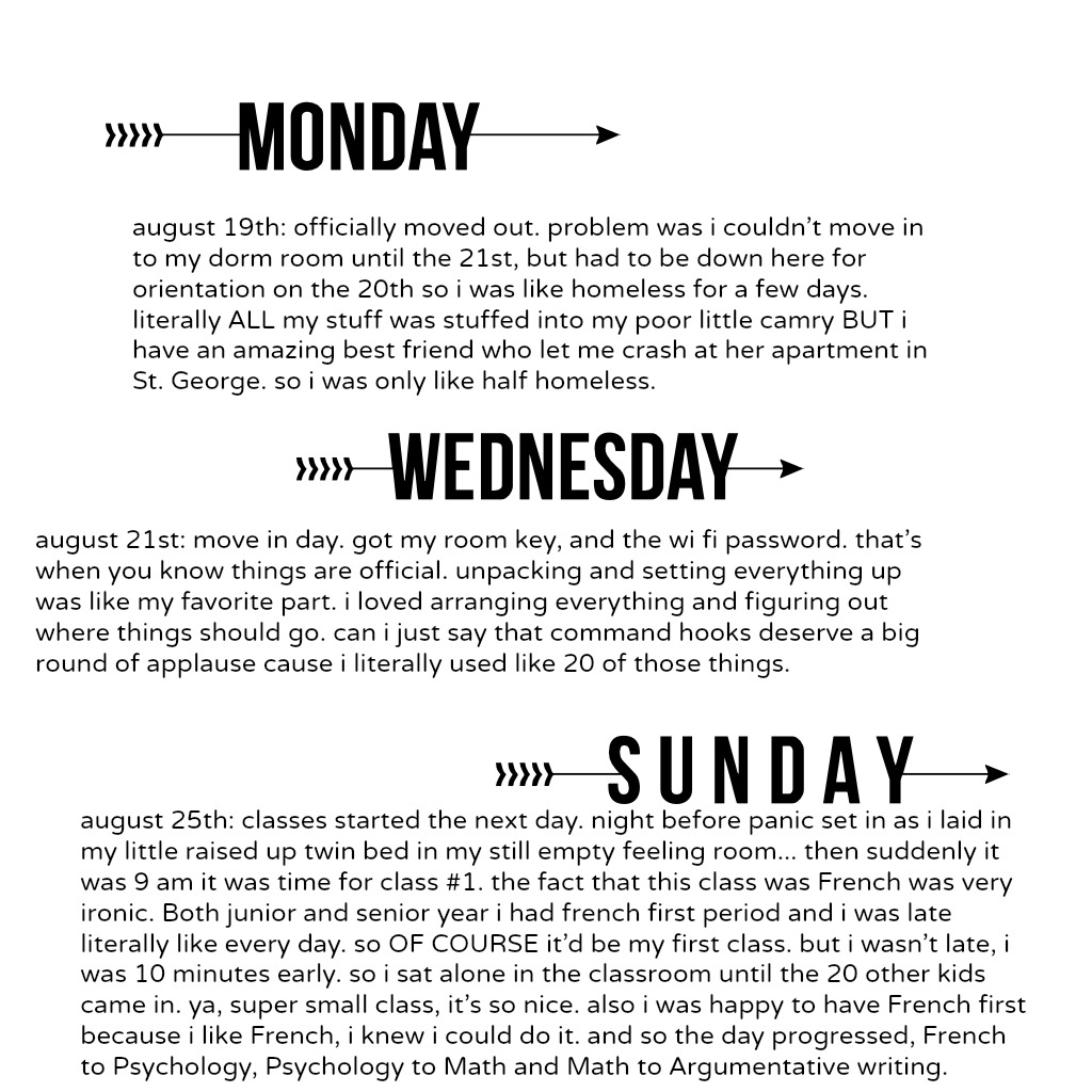 school timeline jpg favourite pet animal essay