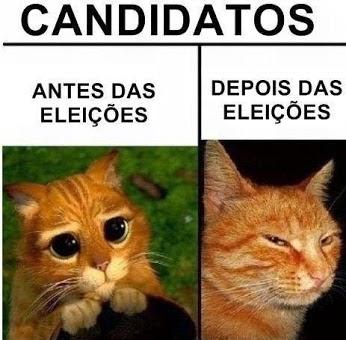 Depois das Eleições