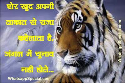 Whatsapp Tiger Attitude Status