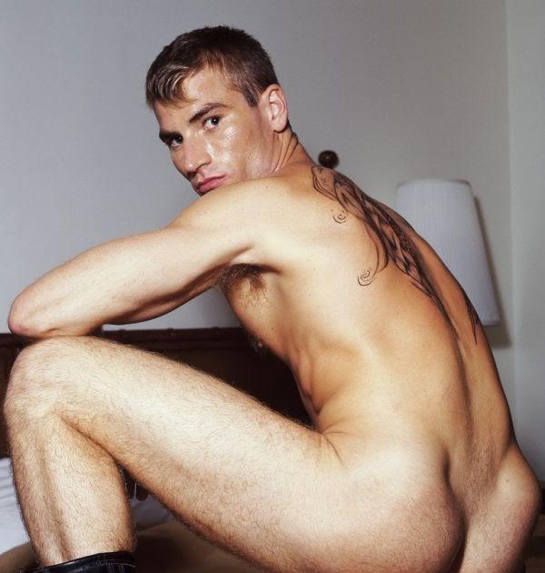gay male erotic stories pics