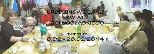 http://www.kwiatdolnoslaski.pl/2014/02/to-juz-4-lata.html
