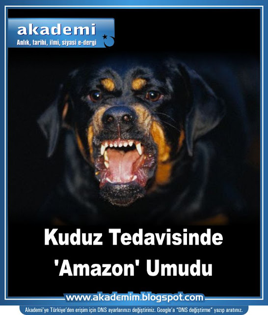 Kuduz Tedavisinde 'Amazon' Umudu