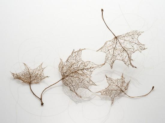 لوحات فنية لأوراق الشجر وبعض الأعمال الفنية من شعر  Human-hair-leaves6-550x413