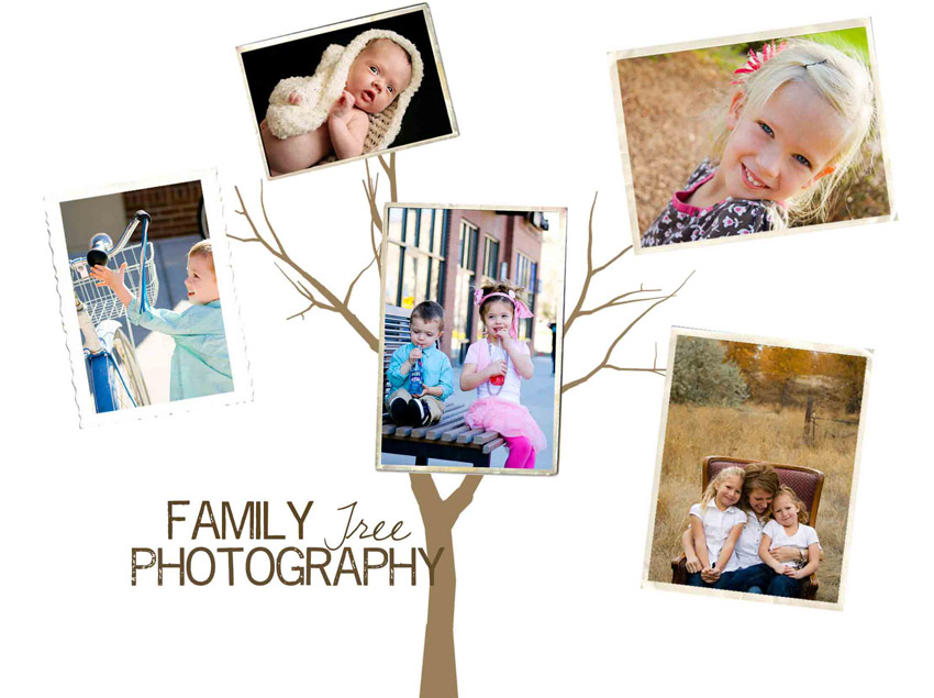 Family Tree Photography