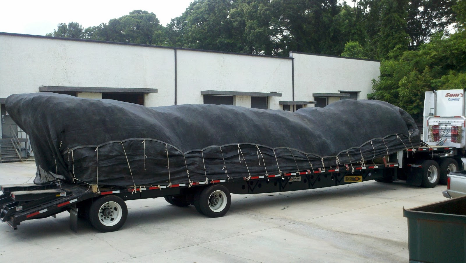 Tree Tarp Bt2460