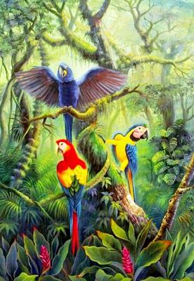 pajaros-exoticos