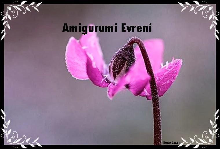 Amigurumi Evreni