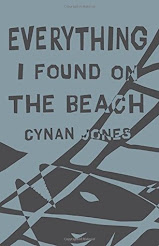 Book Giveaway Ends 10/9: Everything I Found on the Beach