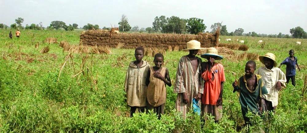 Bio Soleil Senegal & BioKids
