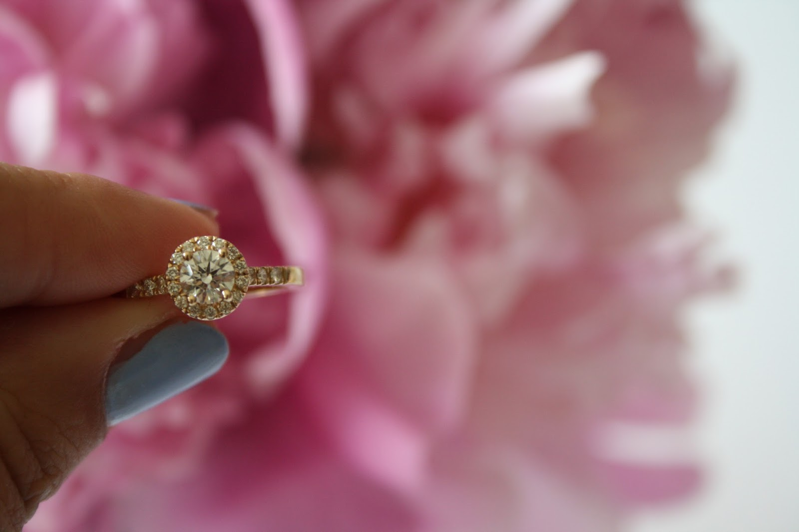 Whish Wedding! - Part One, The Ring
