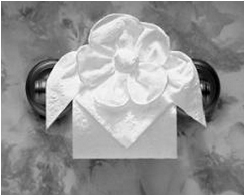 TOILET TISSUE ORIGAMI : BATHROOMS DESIGN IDEAS: Videos, pictures ...