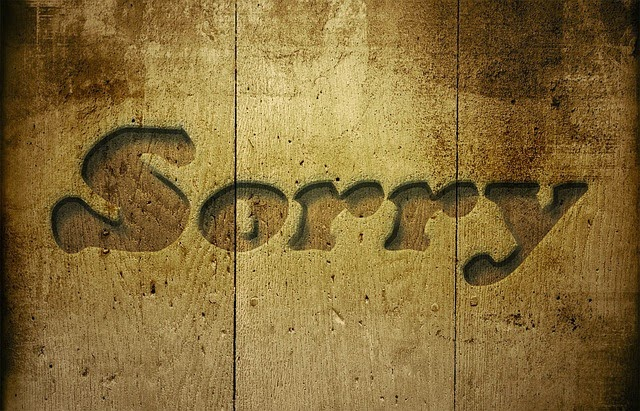Cara Minta Maaf Dengan Lagu Agar Diterima So Sweet