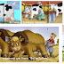 Жилище и работа Коров и Быков