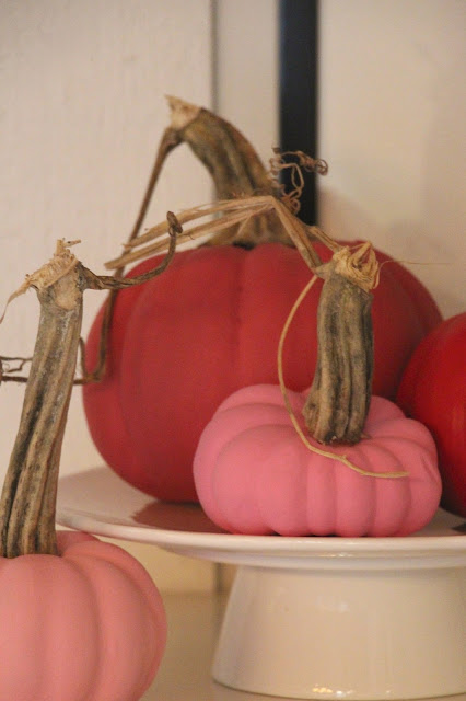 ~DIY painted faux pumpkin's with real stems~