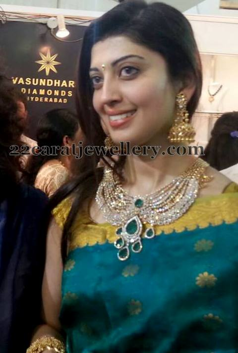 Celebrities at Vasundhara Jewellery