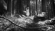 «A Floresta» disponível em VOD