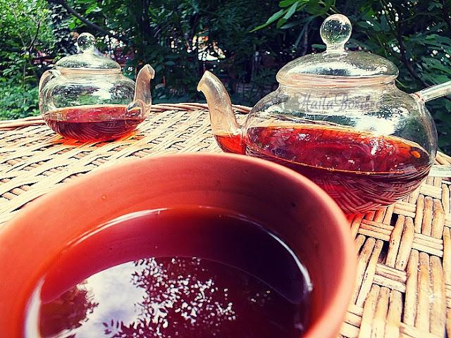 ceai la metoc bucuresti iunie 2013