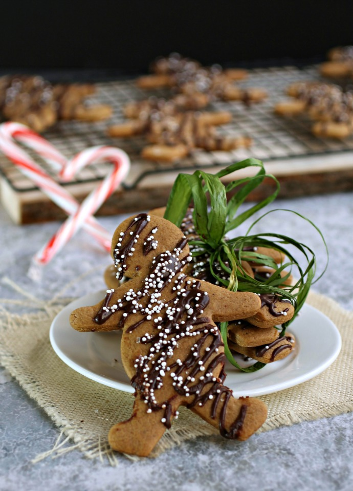 Ginger and Chocolate Spice Cookies