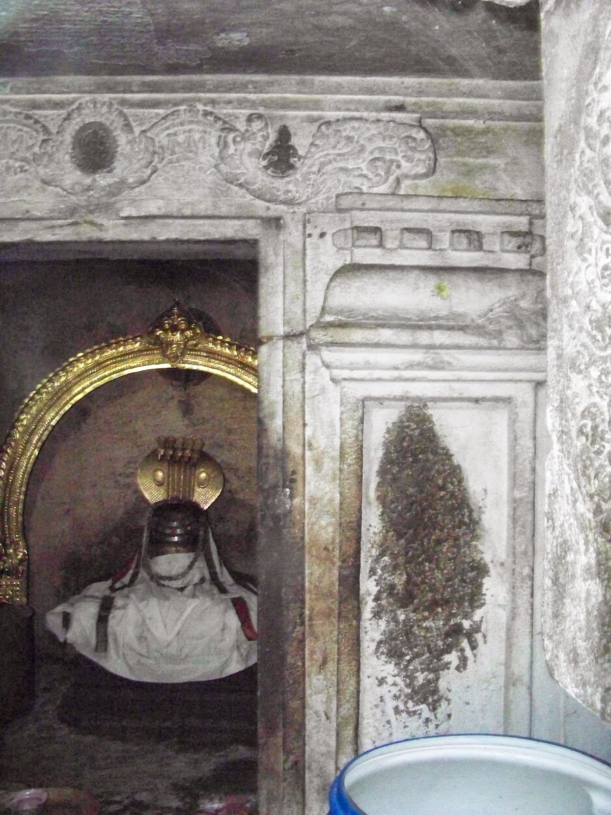 sanctum niche fig erased adi nag sleeping porch